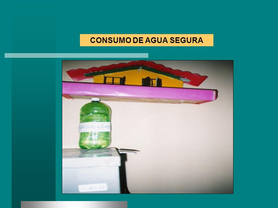 CONSUMO DE AGUA SEGURA