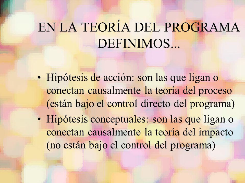 EN LA TEORÍA DEL PROGRAMA DEFINIMOS...