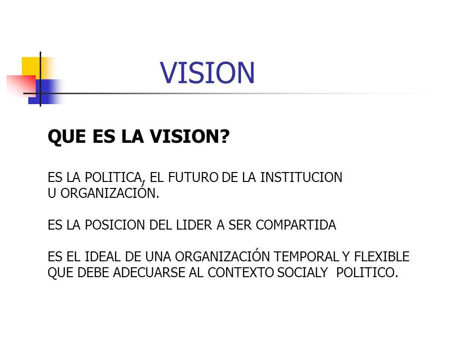 VISION QUE ES LA VISION ES LA POLITICA, EL FUTURO DE LA INSTITUCION