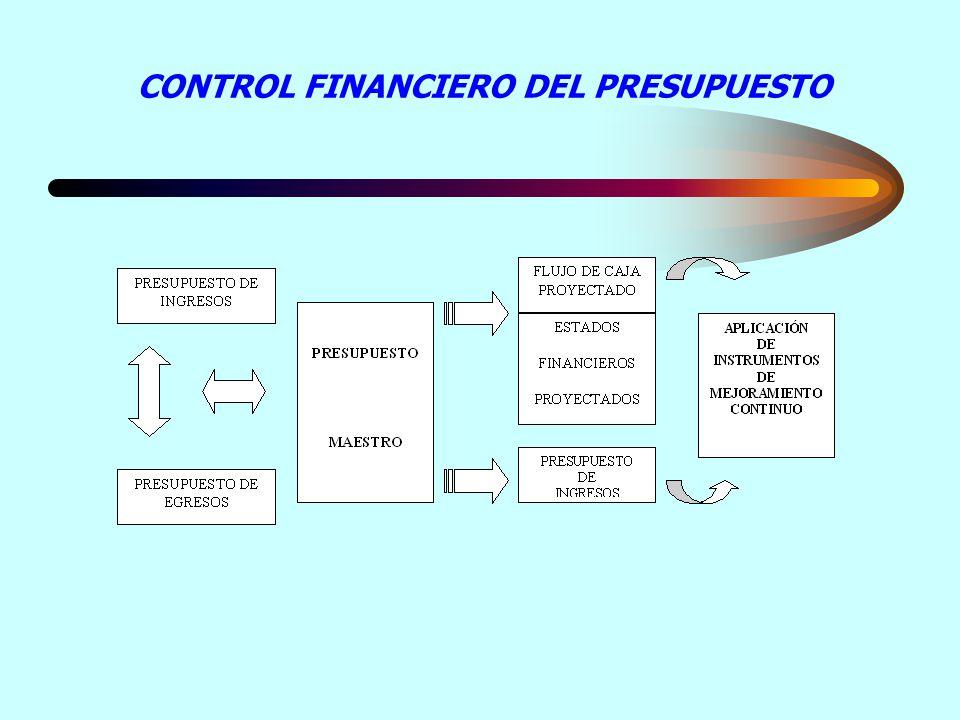CONTROL FINANCIERO DEL PRESUPUESTO
