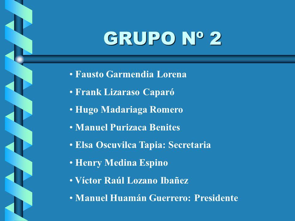 GRUPO Nº 2 Fausto Garmendia Lorena Frank Lizaraso Caparó