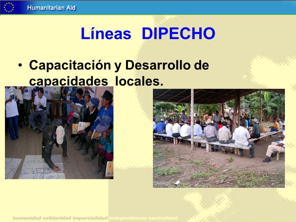 Líneas DIPECHO Capacitación y Desarrollo de capacidades locales.