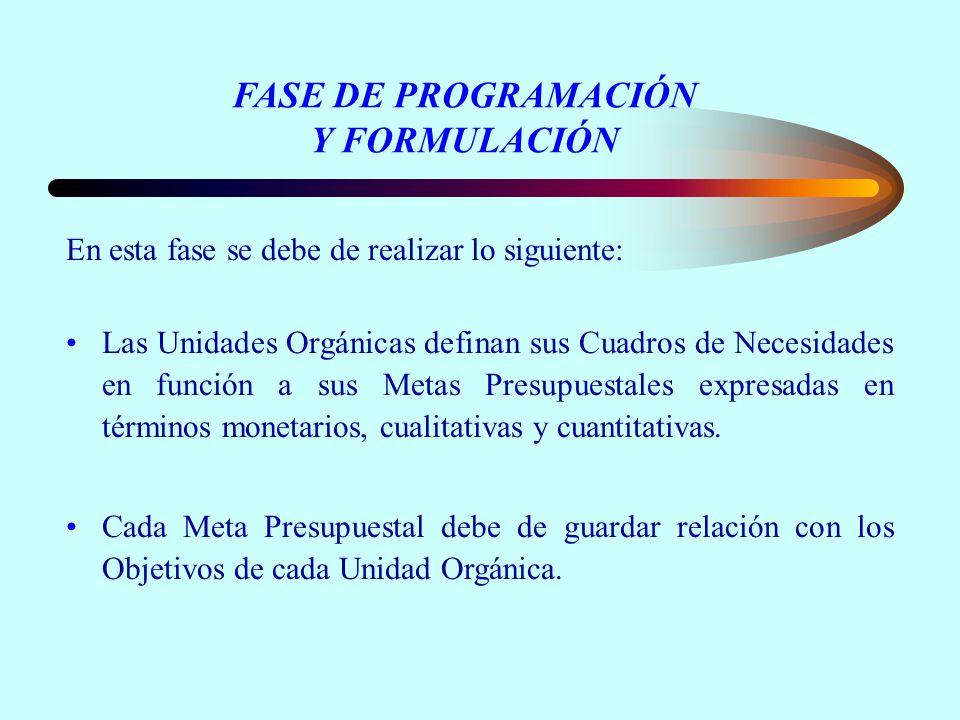 FASE DE PROGRAMACIÓN Y FORMULACIÓN