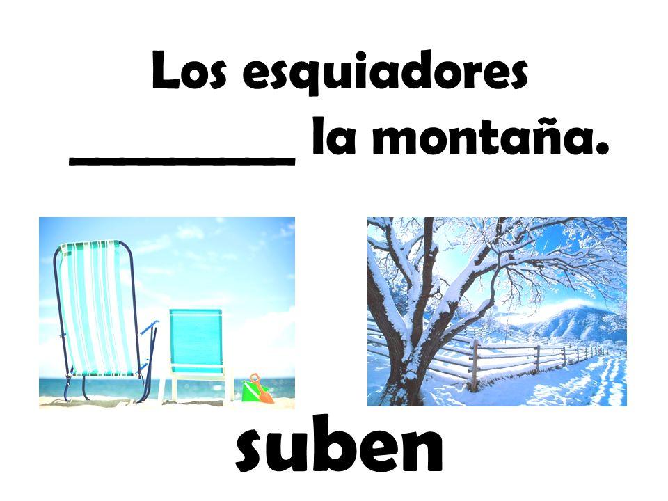 Los esquiadores _________ la montaña.