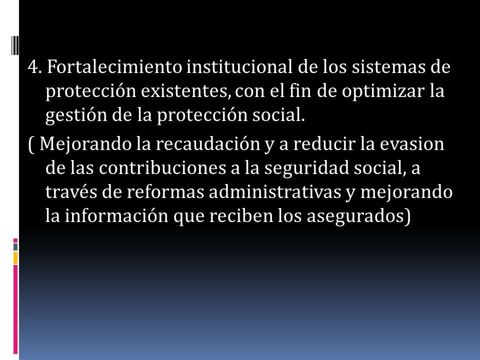 4. Fortalecimiento institucional de los sistemas de protección existentes, con el fin de optimizar la gestión de la protección social.