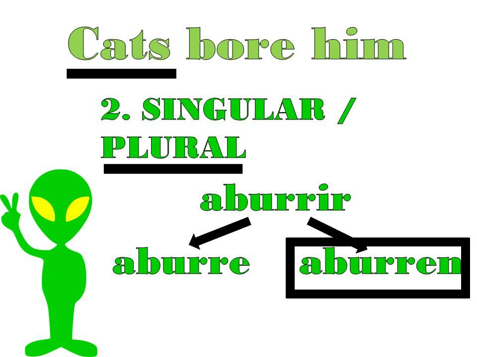 Cats bore him 2. SINGULAR / PLURAL aburrir aburre aburren