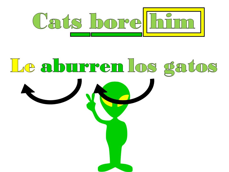 Cats bore him Le aburr en los gatos