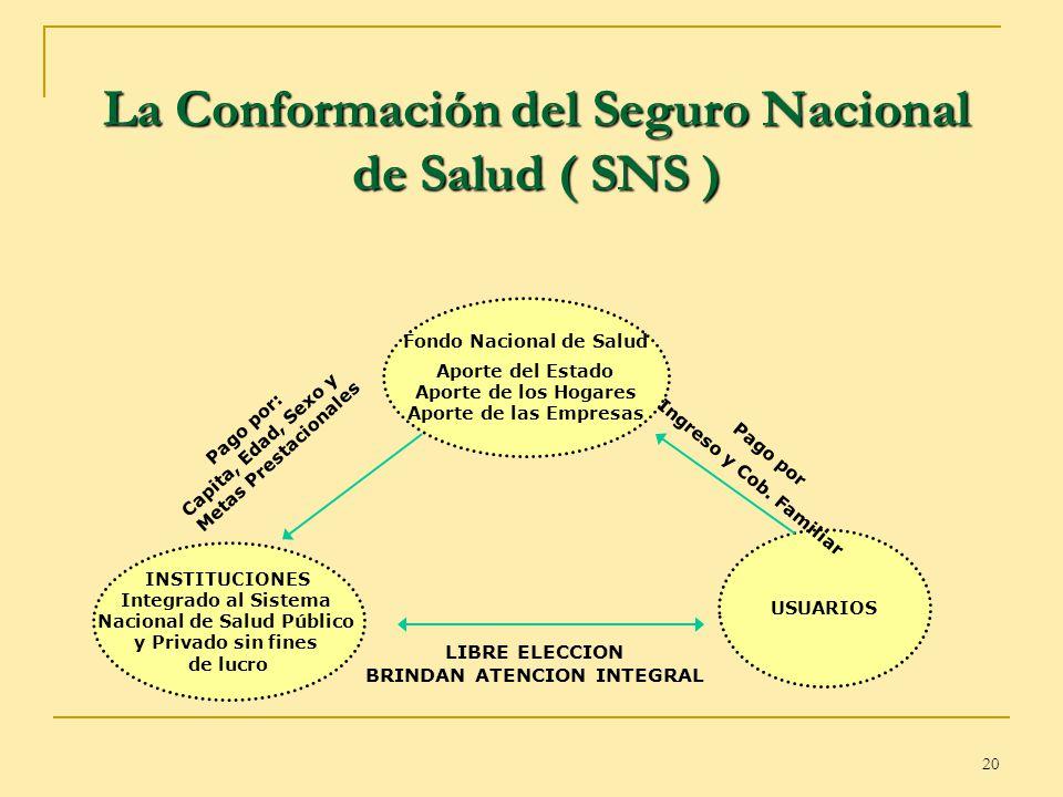 La Conformación del Seguro Nacional de Salud ( SNS )