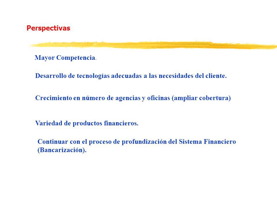 Perspectivas Mayor Competencia. Desarrollo de tecnologías adecuadas a las necesidades del cliente.