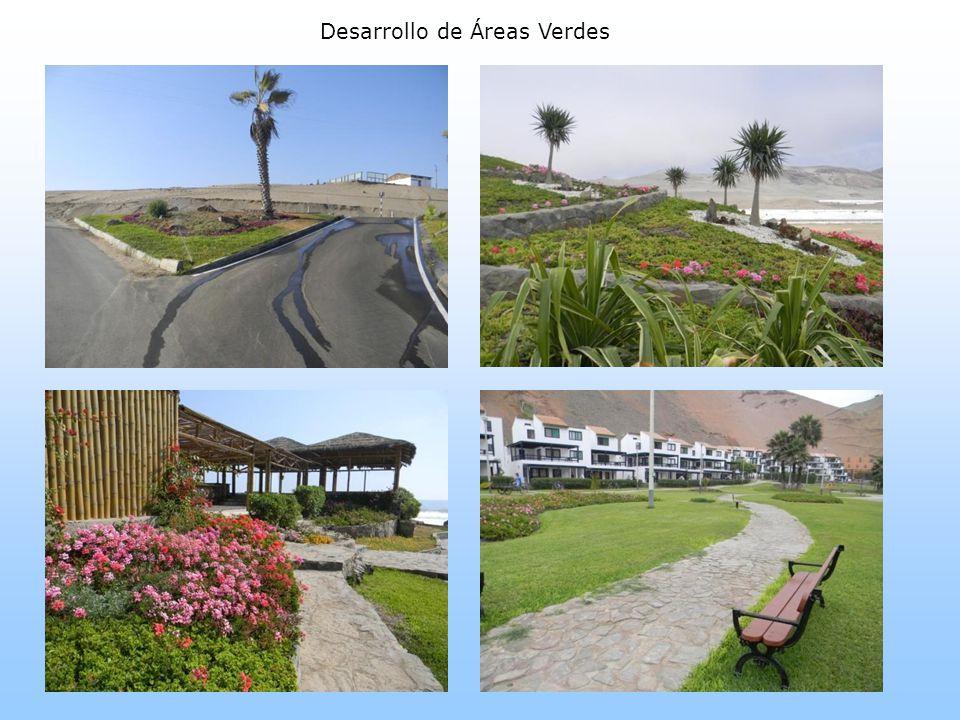 Desarrollo de Áreas Verdes
