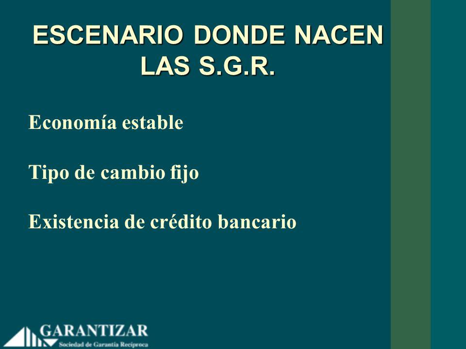 ESCENARIO DONDE NACEN LAS S.G.R.