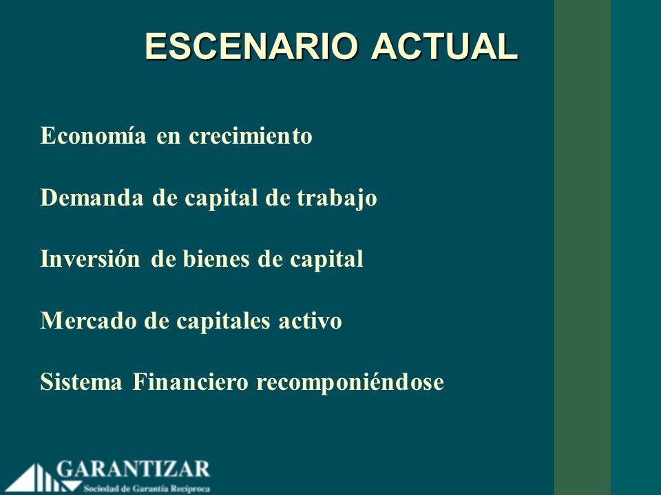 ESCENARIO ACTUAL Economía en crecimiento Demanda de capital de trabajo