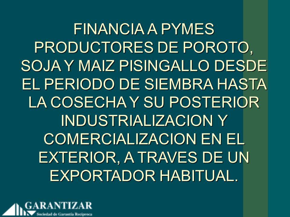 FINANCIA A PYMES PRODUCTORES DE POROTO, SOJA Y MAIZ PISINGALLO DESDE EL PERIODO DE SIEMBRA HASTA LA COSECHA Y SU POSTERIOR INDUSTRIALIZACION Y COMERCIALIZACION EN EL EXTERIOR, A TRAVES DE UN EXPORTADOR HABITUAL.