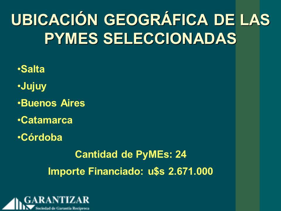 UBICACIÓN GEOGRÁFICA DE LAS PYMES SELECCIONADAS