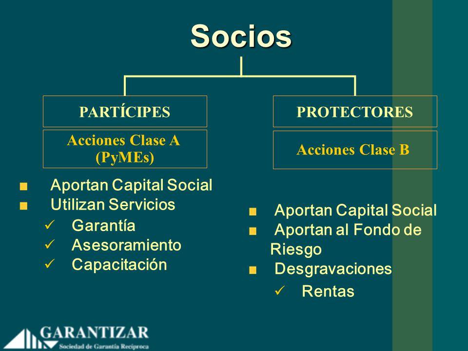 Socios Aportan Capital Social Utilizan Servicios