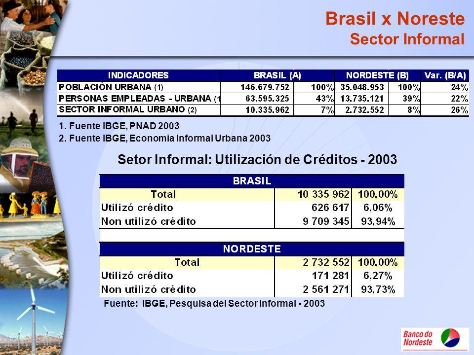Setor Informal: Utilización de Créditos - 2003