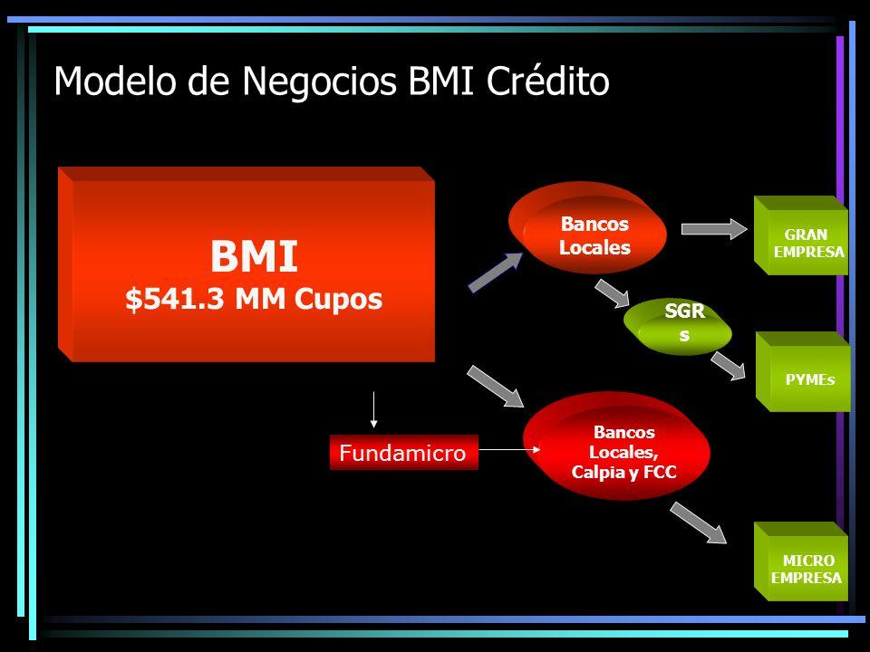 Modelo de Negocios BMI Crédito