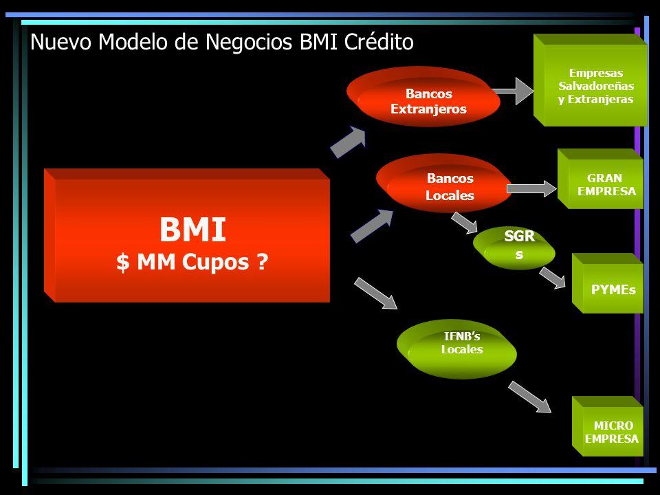 Nuevo Modelo de Negocios BMI Crédito