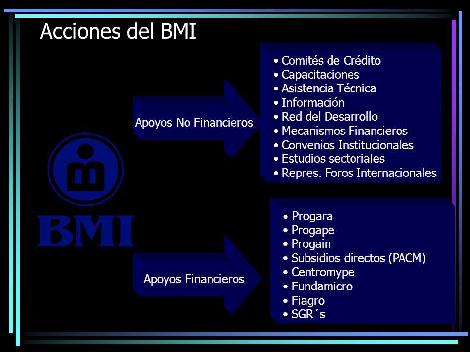 Acciones del BMI Comités de Crédito Capacitaciones Asistencia Técnica