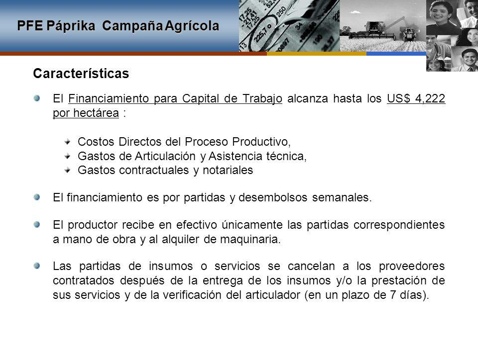PFE Páprika Campaña Agrícola