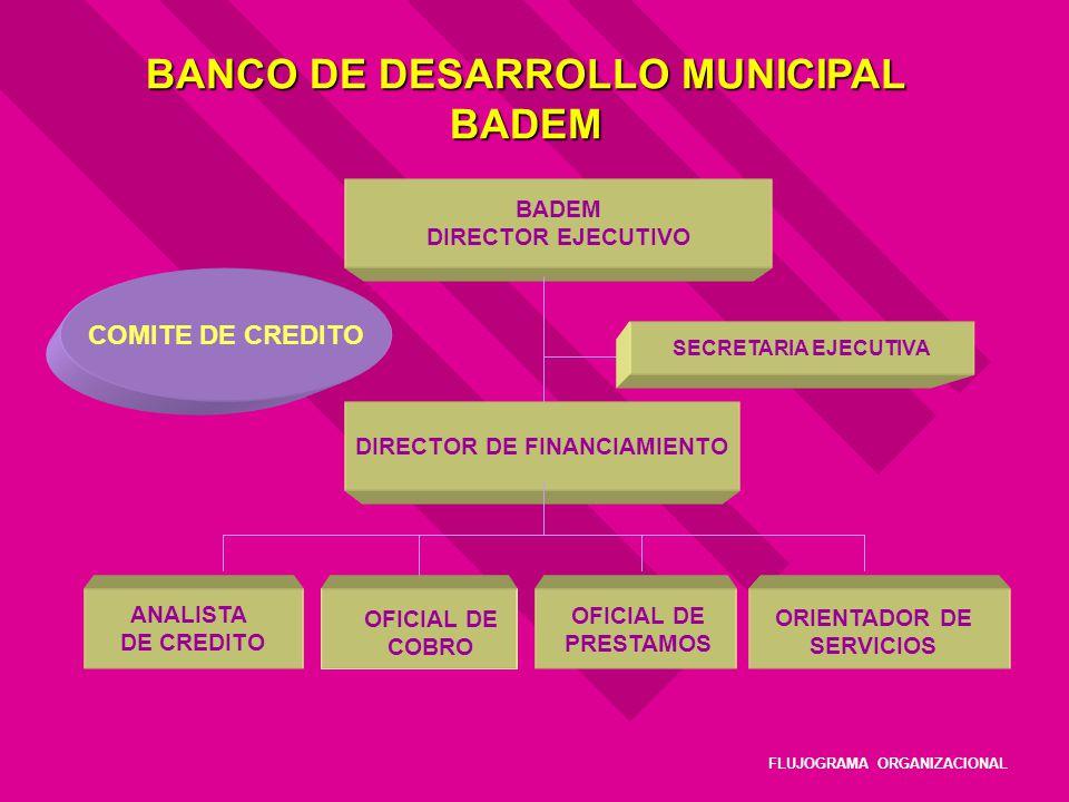 BANCO DE DESARROLLO MUNICIPAL BADEM