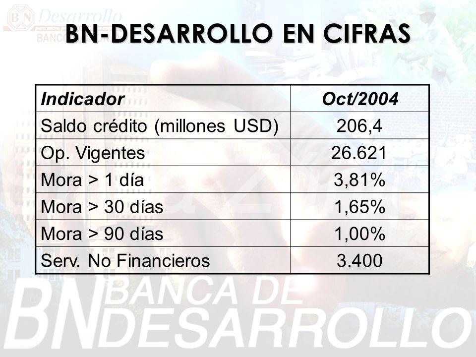 BN-DESARROLLO EN CIFRAS