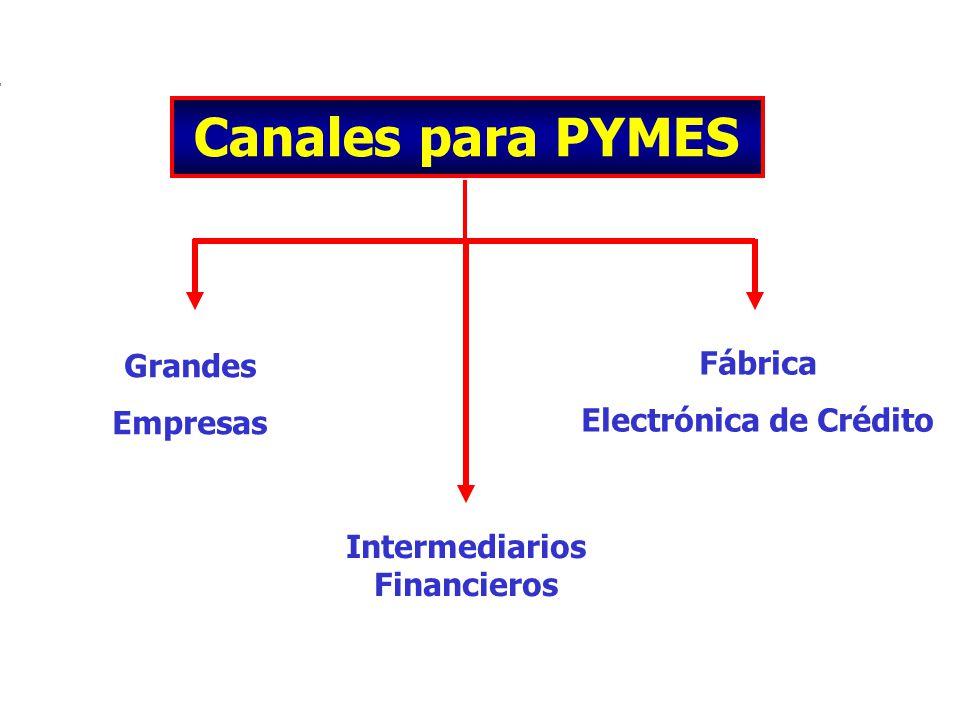 Electrónica de Crédito Intermediarios Financieros