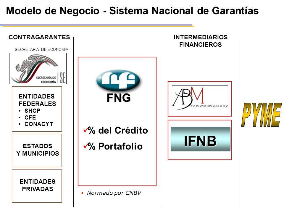 PYME IFNB FNG Modelo de Negocio - Sistema Nacional de Garantías
