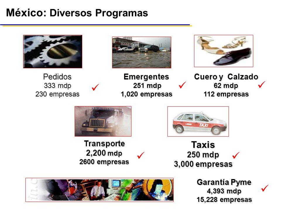 México: Diversos Programas