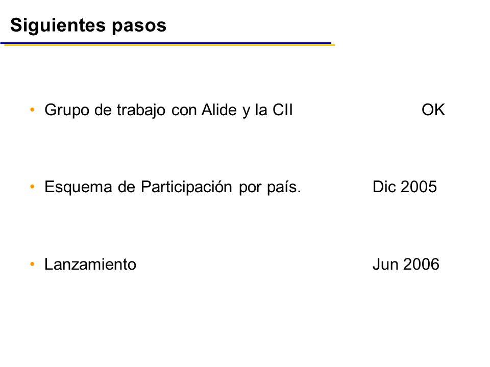 Siguientes pasos Grupo de trabajo con Alide y la CII OK