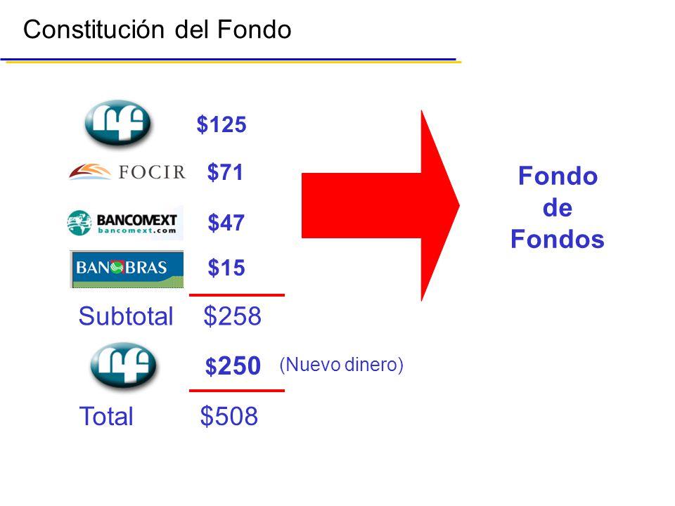 Constitución del Fondo