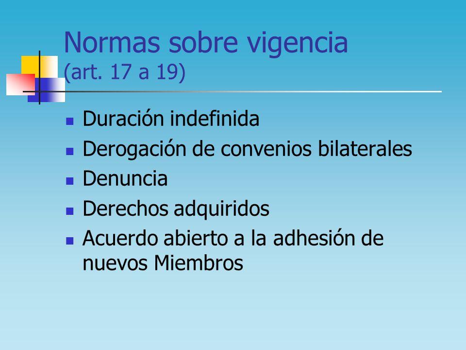 Normas sobre vigencia (art. 17 a 19)
