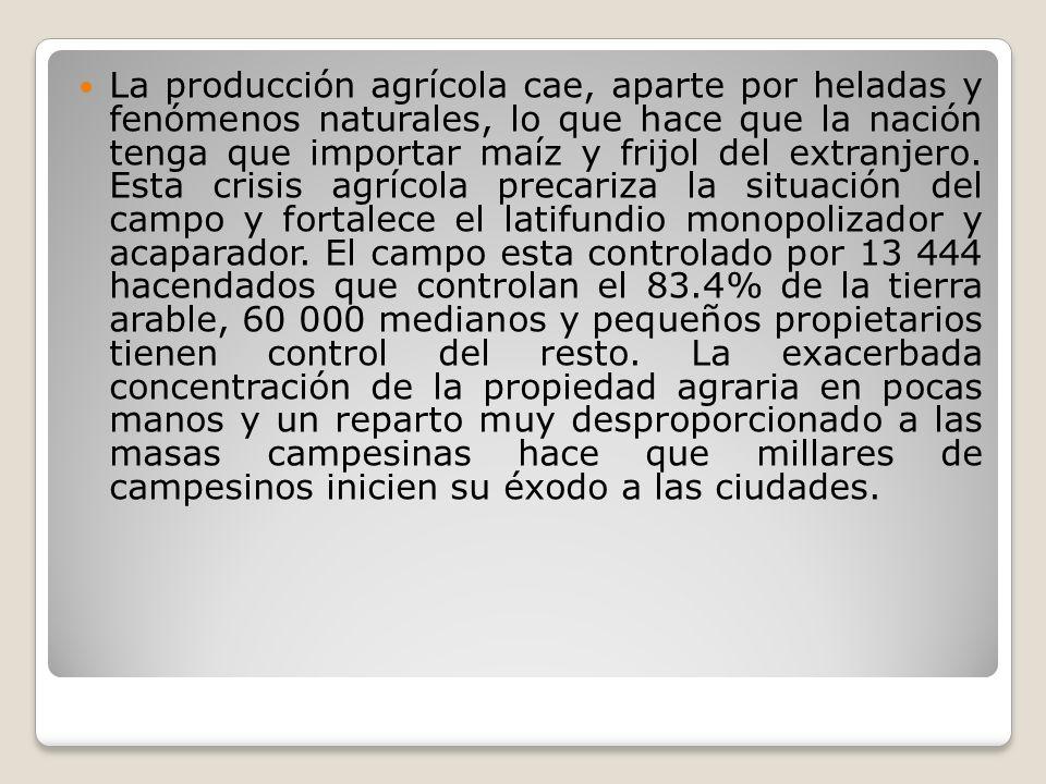 La producción agrícola cae, aparte por heladas y fenómenos naturales, lo que hace que la nación tenga que importar maíz y frijol del extranjero.