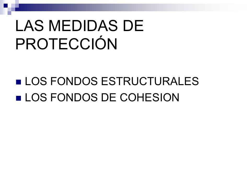 LAS MEDIDAS DE PROTECCIÓN