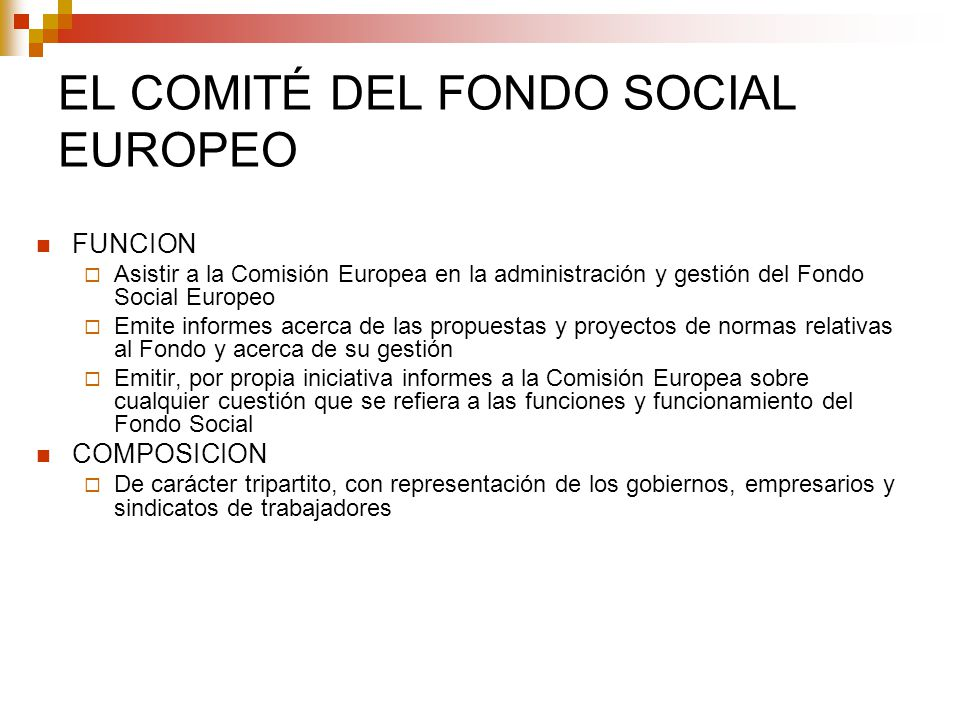 EL COMITÉ DEL FONDO SOCIAL EUROPEO