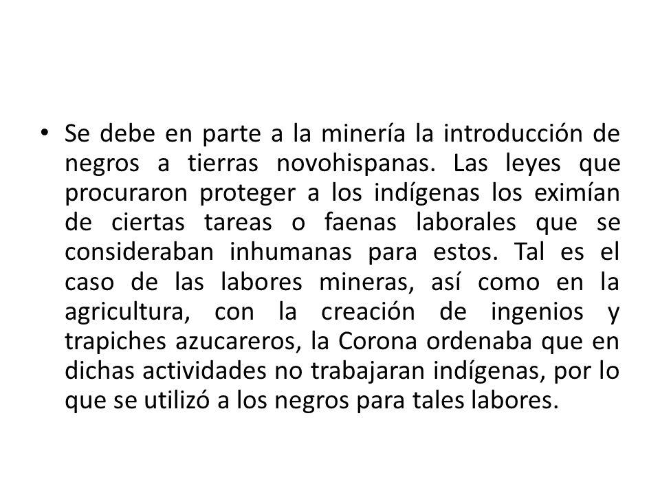 Se debe en parte a la minería la introducción de negros a tierras novohispanas.
