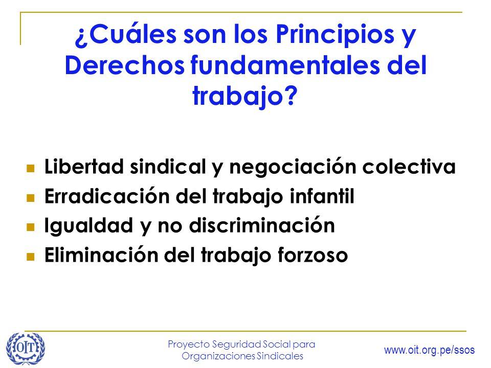 ¿Cuáles son los Principios y Derechos fundamentales del trabajo
