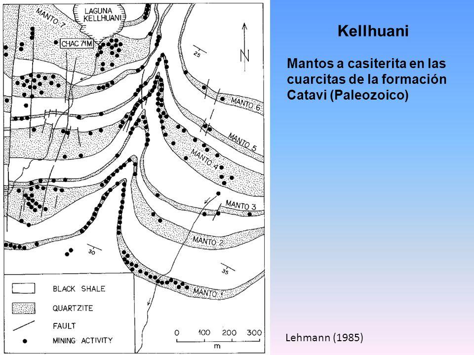 Kellhuani Mantos a casiterita en las cuarcitas de la formación Catavi (Paleozoico) Lehmann (1985)