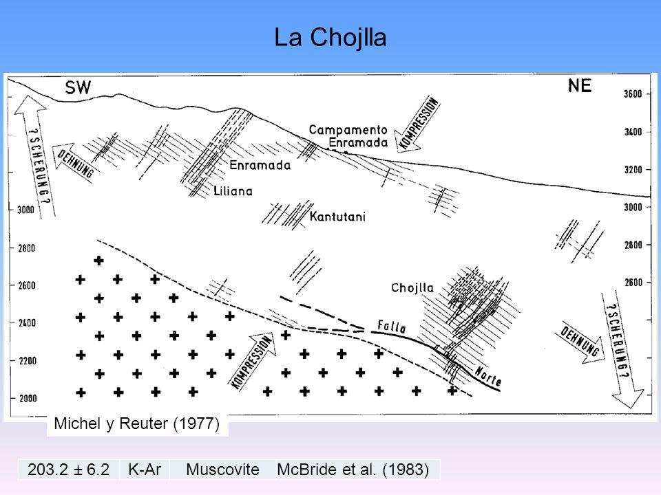 La Chojlla Michel y Reuter (1977) 203.2 ± 6.2 K-Ar Muscovite
