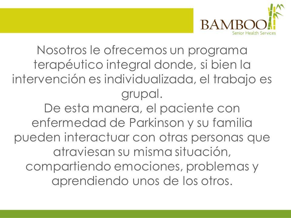 Nosotros le ofrecemos un programa terapéutico integral donde, si bien la intervención es individualizada, el trabajo es grupal.