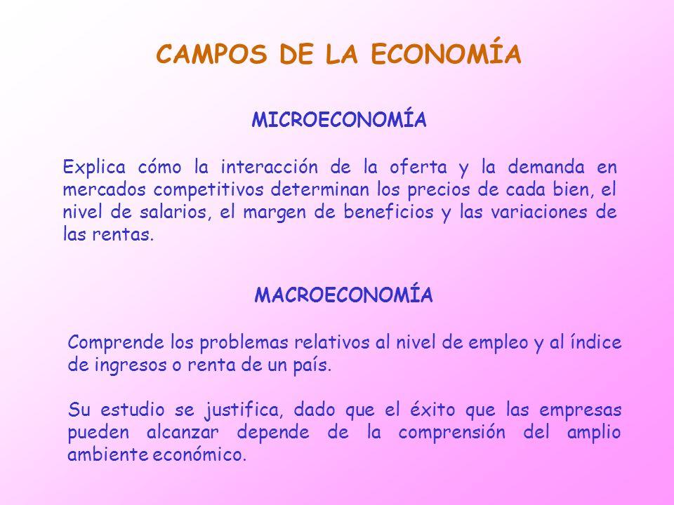 CAMPOS DE LA ECONOMÍA MICROECONOMÍA