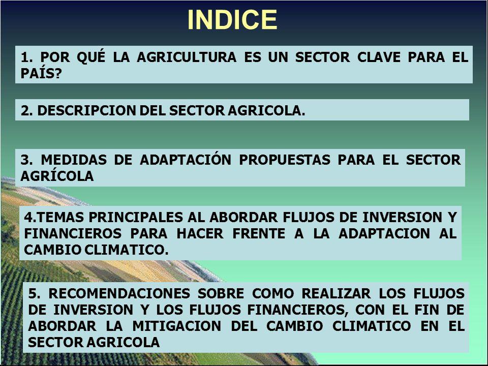 INDICE 1. POR QUÉ LA AGRICULTURA ES UN SECTOR CLAVE PARA EL PAÍS