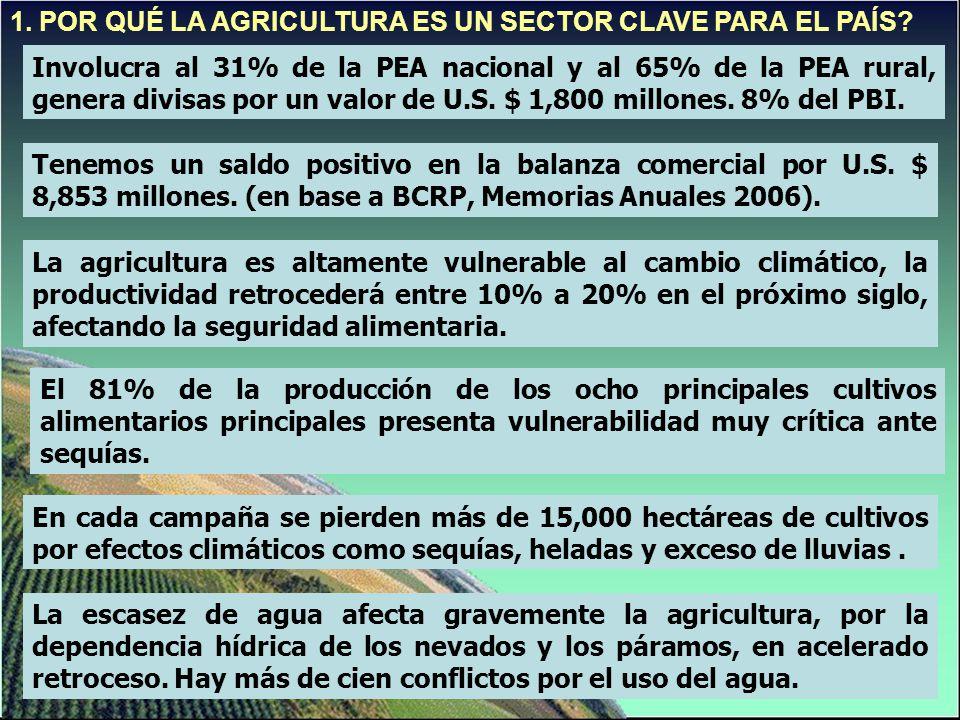 1. POR QUÉ LA AGRICULTURA ES UN SECTOR CLAVE PARA EL PAÍS