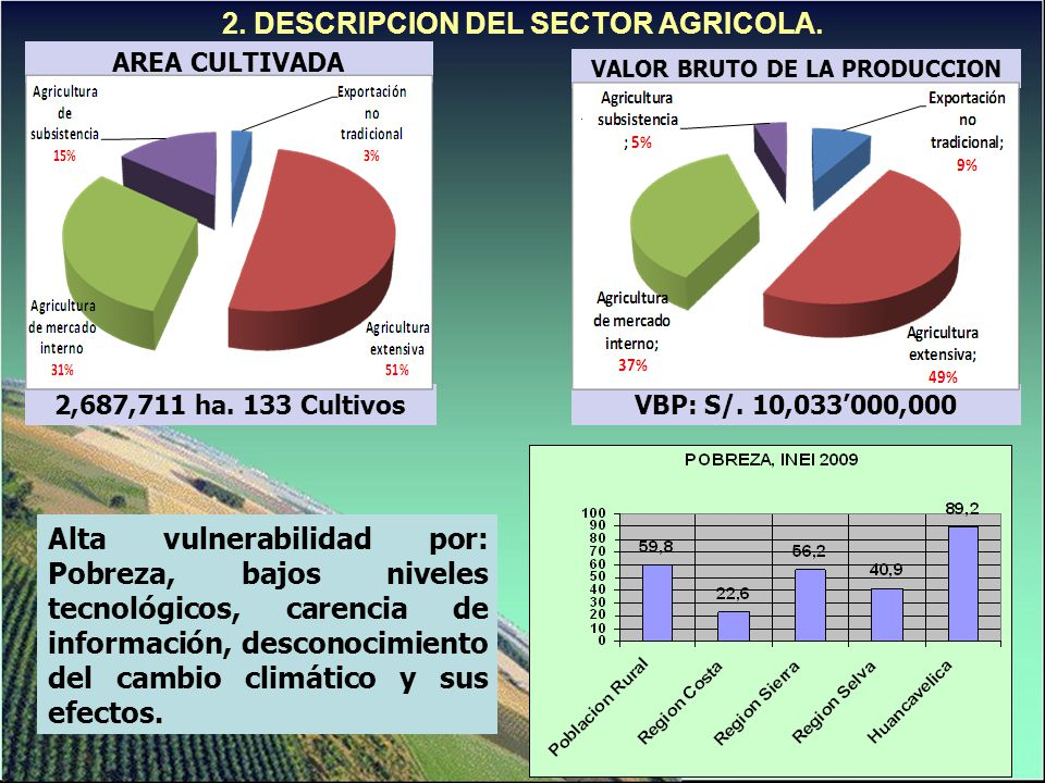 2. DESCRIPCION DEL SECTOR AGRICOLA. VALOR BRUTO DE LA PRODUCCION