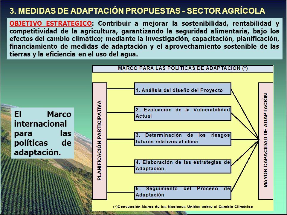 3. MEDIDAS DE ADAPTACIÓN PROPUESTAS - SECTOR AGRÍCOLA