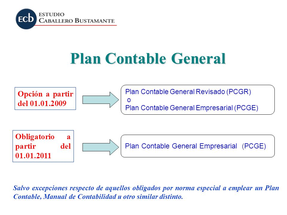 Plan Contable General Opción a partir del 01.01.2009