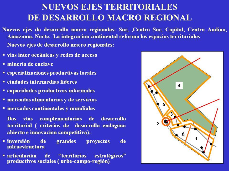 NUEVOS EJES TERRITORIALES DE DESARROLLO MACRO REGIONAL