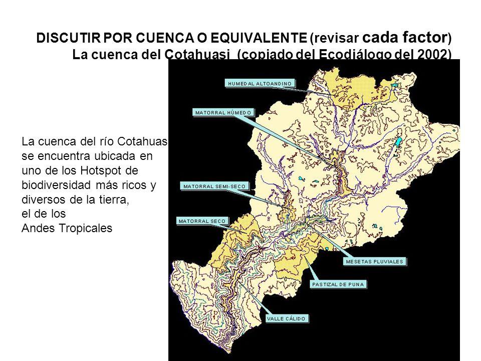 DISCUTIR POR CUENCA O EQUIVALENTE (revisar cada factor) La cuenca del Cotahuasi (copiado del Ecodiálogo del 2002)