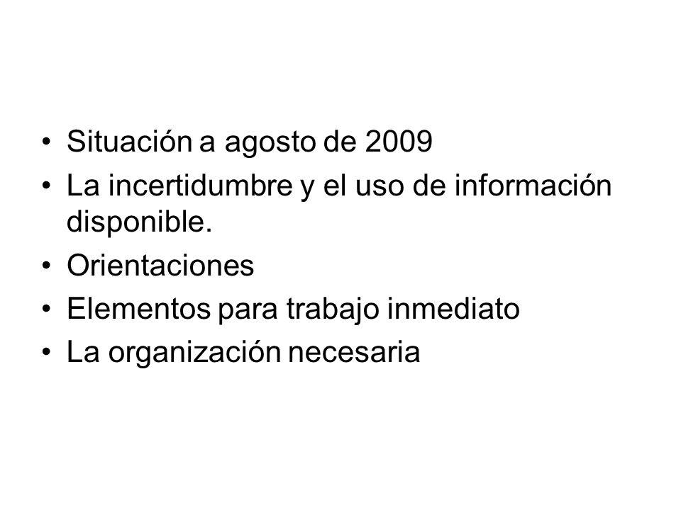 Situación a agosto de 2009 La incertidumbre y el uso de información disponible. Orientaciones. Elementos para trabajo inmediato.