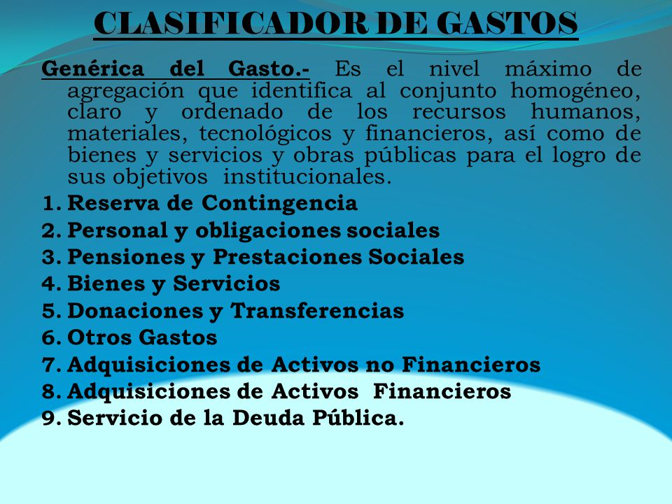 CLASIFICADOR DE GASTOS